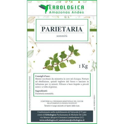 Parietaria pianta tisana confezione da 1 kg