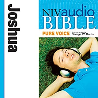 NIV Audio Bible, Pure Voice: Joshua cover art