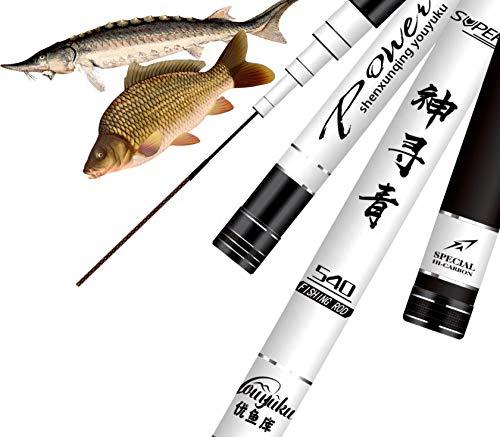 laselectionfishing Canne à pêche au Coup Chinoise...