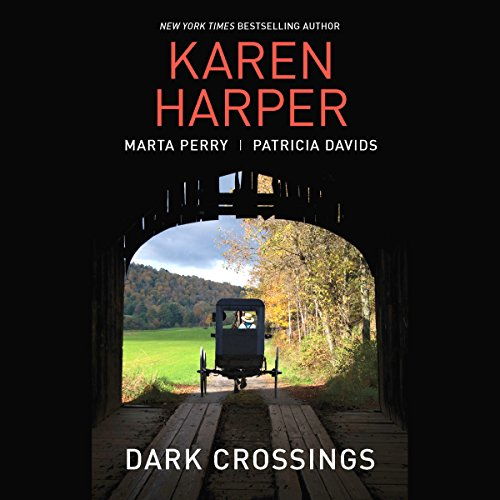 Dark Crossings audiobook cover art