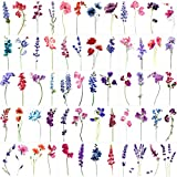 Rejaski 15 Sheets Watercolor Flower Lavender Temporary Tattoos For Women Girls, Tiny Floral Violet Small Sweet Pea Tattoo Temporary Sticker, Adults Delphinium Kids Fake Tatoos Sexy Tatto Kit Tato Arm