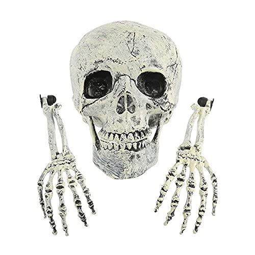 ITSHAY Scheletro Set Prop, 3 PZ Fake Head Mano Bones Pront Secret Room Horror Skull Ornament Halloween Skull Outdoor Realistico Spettrale Spooky Groveyard Decorazione Terra