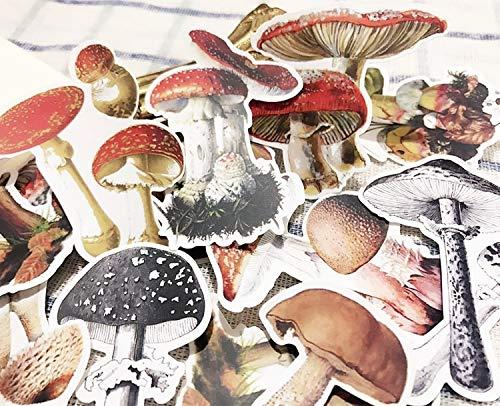 BLOUR vintage paddenstoelsticker, scrapbooking, sticker, decoratieve journal happy planner sticker, doe-het-zelf ambachtelijke fotoalbums en kaarten maken 29 stuks