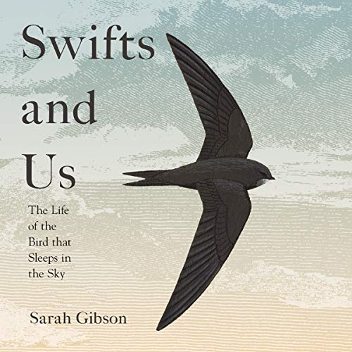 Swifts and Us cover art