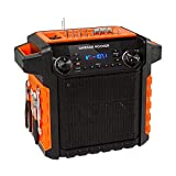 ION Audio Garage Rocker Portable Bluetooth Speaker - Black / Orange