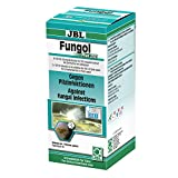 JBL Fungol Plus 250 1006300, Heilmittel gegen Pilzinfektionen für Aquarienfische, 200 ml