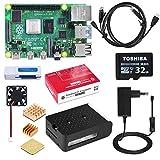 DINOKA Raspberry Pi 4 Starter Kit con Micro SD de 32GB Clase 10, 5V 2.5A Adaptador de Corriente con Interruptor, 3 Radiadores, Cable HDMI, Caja de Calidad, Lector de Tarjetas, Retículo (2GB RAM)