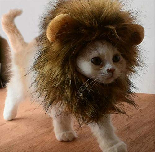 ACMEDE Süße Löwenkostüm, Löwenmähne mit Ohren für Katzen, Kleine Hunde Oder Welpen, für Halloween, Partys, Feste-Größe Passend für Haustiere mit Einem Halsumfang von 28 bis 38 cm/S/M/L (M)