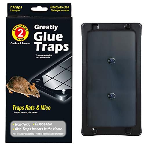 Wanke Trampas para Ratones Trampa Adhesiva para Ratas Control de Ratones Trampas para Cucarachas Súper Pegajoso, Paquete de 15 Cajas / 30 Piezas