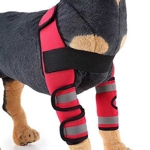 BVAGSS Einstellbar Bandage Knieschützer Atem Kniebandage Hund Leggings Joint Wrap Unterstützung für Das Hinterbein/Vorderbein Ihres Hundes XH005 (S, Red)