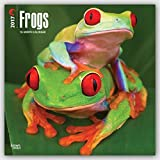 Frogs - Frösche 2017 - 18-Monatskalender: Original BrownTrout-Kalender [Mehrsprachig] [Kalender] (Wall-Kalender)