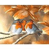 ZXDA DIY Pintura por números imágenes acrílicas por números Animales Marcos Dibujar Pintura sobre Lienzo A1 50x70cm