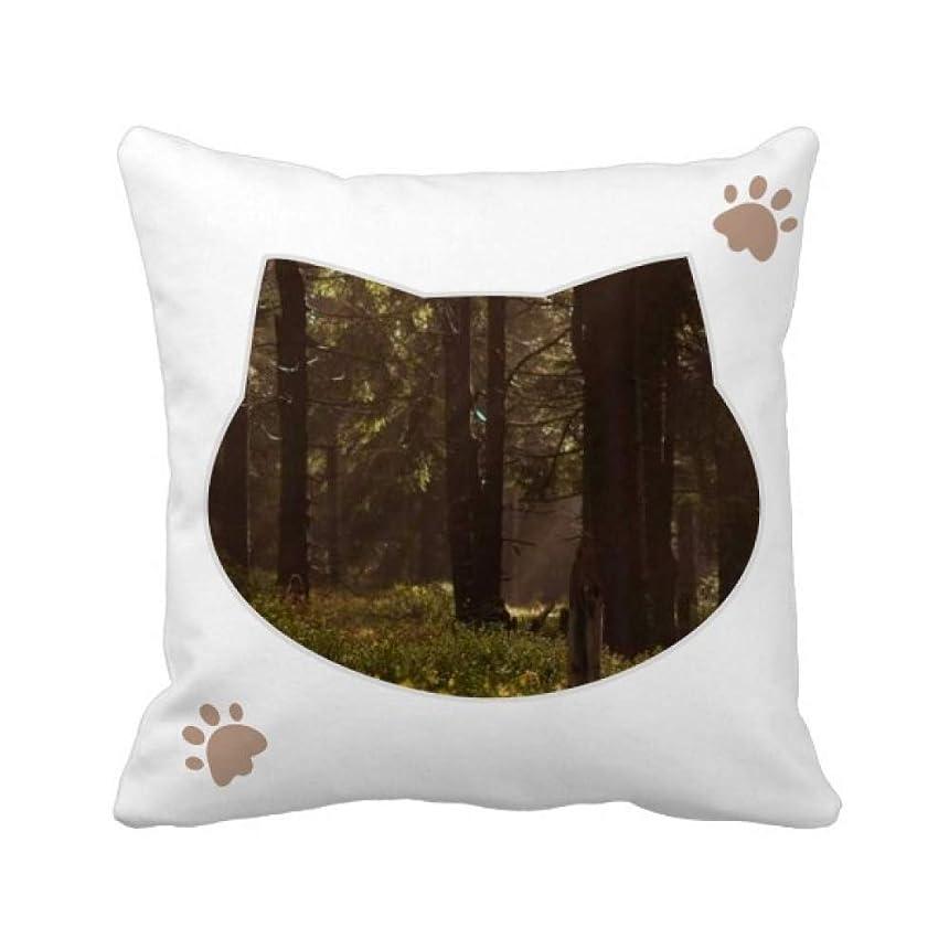 数モーション強化暗い森林光科学は自然の風景 枕カバーを放り投げる猫広場 50cm x 50cm