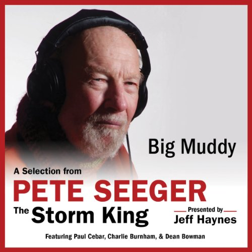Big Muddy audiobook cover art