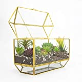 "Ferrisland Large Gold Glass Terrarium, Decorative Jewelry Display Case Box - 7.3""x13""x9.1"""