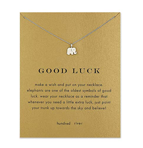 Baydurcan Friendship Anchor Compass Necklace Good Luck Elephant Pendant Chain Necklace with Message Card Gift Card (Silver Elephant)