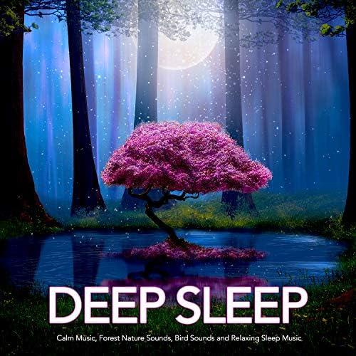 Sleeping Music, Nature Sounds & Deep Sleep Music Experience