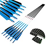 Linkboy Archery Carbon Arrows Hunting Practice Target Arrows Fluorescent Blue with Removable Tip for Compound Recurve Long Bows, Spine 300/30inch, Pack of 12PCS
