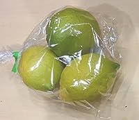 糸島産レモン約2-3個 福岡産