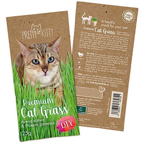 PRETTY KITTY Premium Katzengras Saatmischung: 1 Beutel mit 25g Katzengras Samen für 10 Töpfe fertiges Katzengras – Eine grüne Katzen Wiese – Natürliche Katzen Leckerlies – Pflanzen Samen - Grassamen