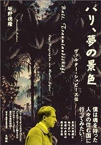 バリ、夢の景色 ヴァルター・シュピース伝 の本の表紙