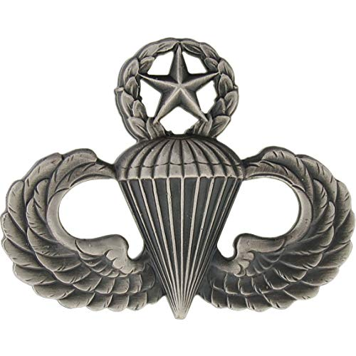 US ARMY Airborne MASTER Parachutist Paratrooper Jump Wings Pin Oxidized Badge
