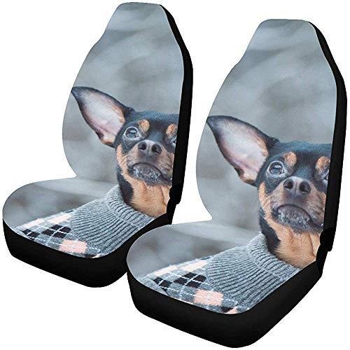 Fall Ing Autostoelhoezen, stoelhoezen, voorstoelen, hoezen, mooie trui voor honden, winters, bos, speelgoed, auto, stoelbeschermer, autostoelbeschermer, autobeschermer, afdekking, geschikt voor de meeste auto's