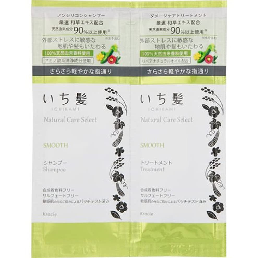 天使付録ハーネスいち髪 Natural Care Select スムースシャンプー&トリートメント ミニパウチ 1セット