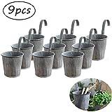 Toruiwa. 9pcs Pots de Fleur Suspendre en métal Pot de Fleur en Métal Suspendu,...