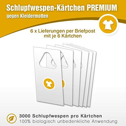 Mottenfrei Schlupfwespen gegen Kleidermotten/Biologische Bekämpfung von Kleidermotten Textilmotten / 6 x 6 Kärtchen mit 3000 Schlupfwespen