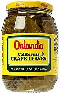 Orlando California Grape Leaves 16 oz. (Pack of 6)