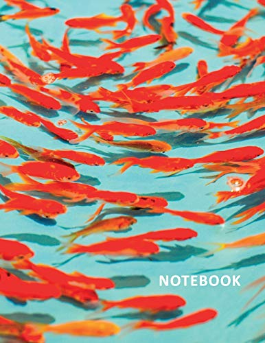 College Ruled Notebook: Colorful schooling freshwater fish Stylish Student Composition Book Daily Journal Diary Notepad for researching goldfish starter kit