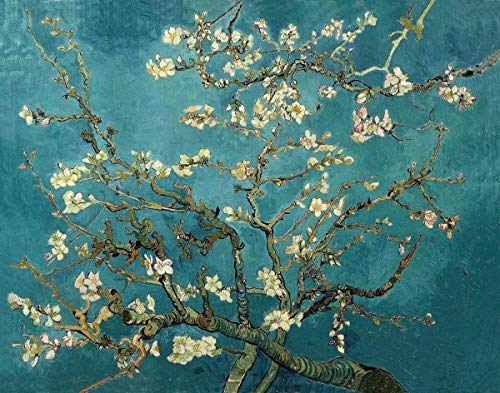Schilderen op nummer-kits voor volwassenen, wereldberoemde olieverfschilderij met penseel en acryl pigment abrikoos bloem van Van Gogh schilderij collectie voor vrienden en familie, 16 x 20 inch, zonder lijst