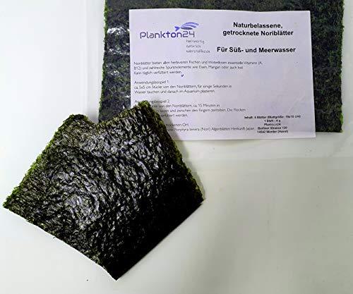 Plankton24 Naturbelassene, getrocknete Meeresalgenblätter Noriblätter Futter Algen (19x10 cm, 5 Blätter 4 g)