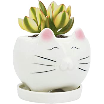 GeLive Cute Cat Succulent Planter Pot with Drainage Tray, White Ceramic Plant Container, Window Box, Unique Animal for Indoor Home Decor (White)