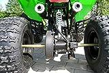 Kinder Quad 125 ccm grün Warrior - 5