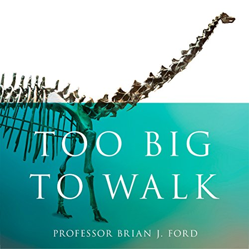 Too Big to Walk audiobook cover art