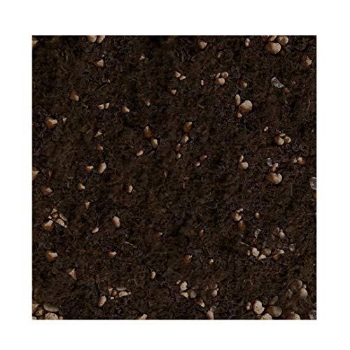 Tercomposti Terra - 5L Misto Argilla e Torba acida di Sfagno - Misto specifico per Fiori, Piante Ornamentali, Piante deboli e Delicate