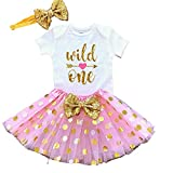 Wild One 1st Birthday Girl Outfit, Pink and Gold First Birthday Tutu Dress (12M)