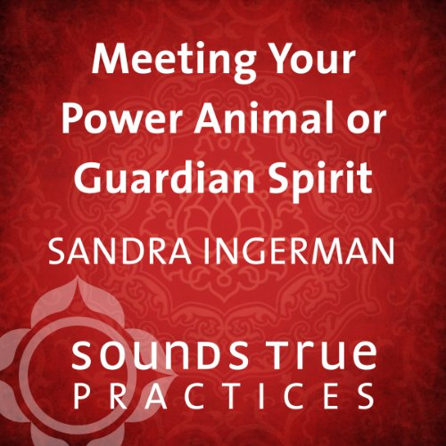Meeting Your Power Animal or Guardian Spirit audiobook cover art