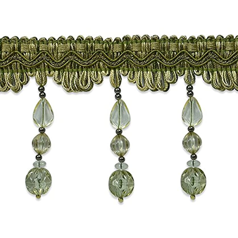 Expo International Tessa Bead Fringe Trim Embellishment, 20-Yard, Sage lwkrearibk69583
