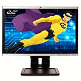 HP Pantalla PC Pro 22 LA2205wg TFT TN VGA DVI Display VESA U