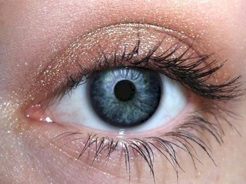 Chai Eye Makeup Eye Shadow Eyeliner- Natural Brown Mineral Makeup Pro Pigment Eyeshadow - Not Bare Minerals, Mineral Fusion, MAC