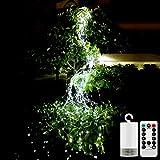 Queta - Guirnalda de luces LED, con mando a distancia, para exteriores, funciona con pilas, color blanco