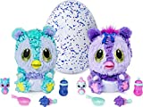 Hatchimals 6046470 - HatchiBabies Kitsee, Ei mit Baby-Hatchimal und interaktiven Accessoires -