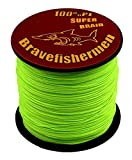 Fluorescent Green Super Strong Pe Braided Fishing Line 6LB to100LB (300m, 10LB)