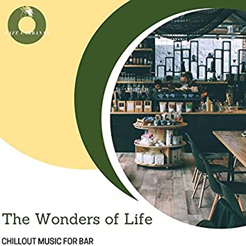 The Wonders Of Life - Chillout Music For Bar