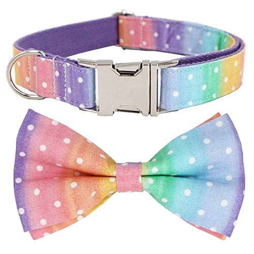 Rainbow Polka Dot Hundehalsband und Leine Set mit Fliege für große und kleine Hunde Baumwollgewebe Halsband Metallschnalle, Halsband Schleife, S.