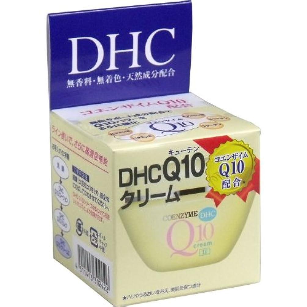 熟した帽子逆さまにDHC Q10クリーム2 20g