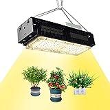 500W LED植物成長ランプ 植物育成ライト 全なスペクトル植物ライト 家庭菜園 野菜工場 日照不足解消 低消耗 屋内水耕栽培温室野菜植物と花種まきから収穫まで 2年保証 (500W)